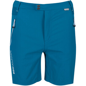 Regatta Mountain Shorts Men, olympic/gulfstream
